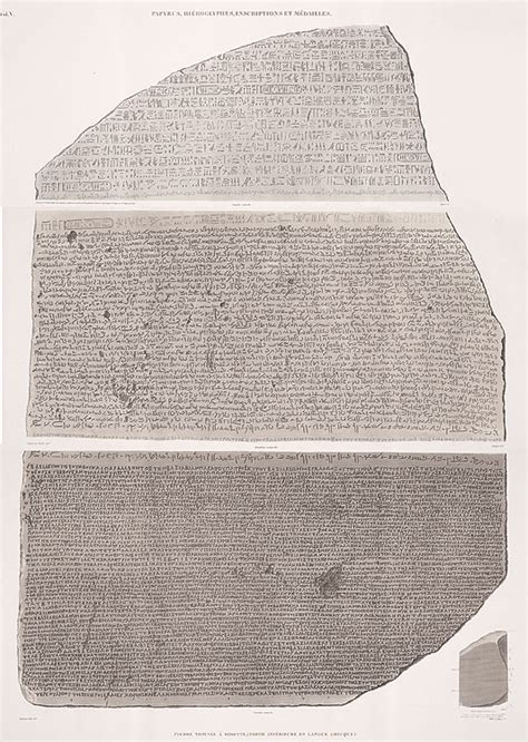 rosetta stone object napoleon and the scientific expedition to egypt linda