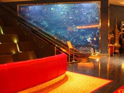 yes that is another floor to ceiling aquarium picture