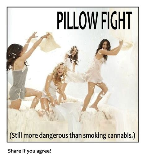 Pillow Fight Meme - 10 best images about marijuana quotes on pinterest