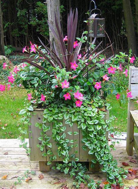 143 best combination planters images on pinterest