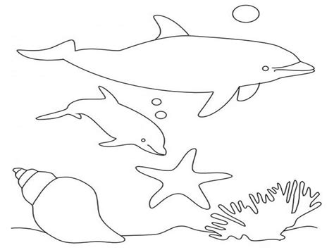 Dolphin Coloring Pages To Print Out Free Printable Dolphin Coloring Pages For Kids