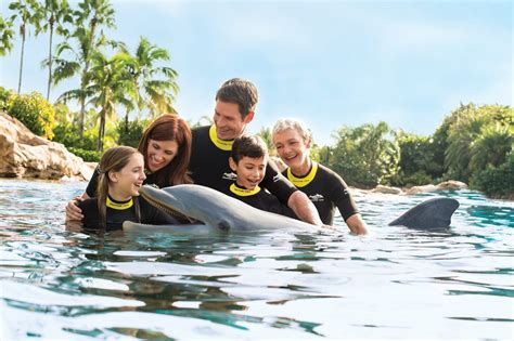 Discovery Sweepstakes - discovery cove launching sweet 16 sweepstakes on the go in mco