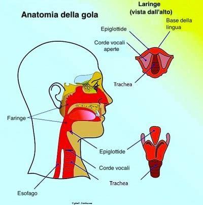 tumore orecchio interno sintomi tumore alla gola sintomi iniziali cancro et 224