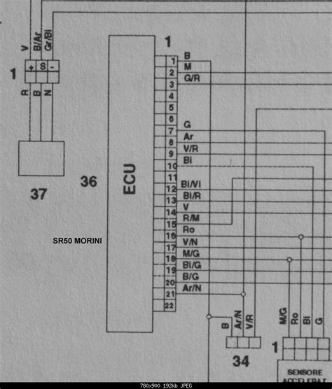 wiring diagram yamaha wiring motorcycle wire