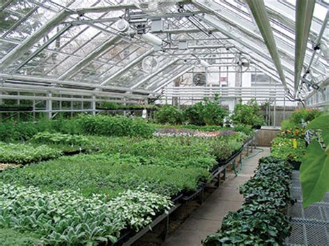 greenhouse layout hummert international
