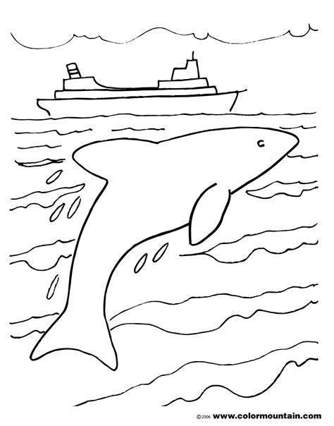 coloring pages of winter the dolphin tagged winter dolphin tale coloring pages archives