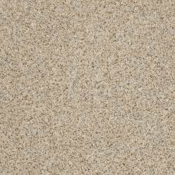 stainmaster carpet colors shop stainmaster trusoft iii cityscape textured