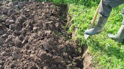 garten im herbst oder frühjahr umgraben rasen kultivieren rasen oder wiese im garten oder eine