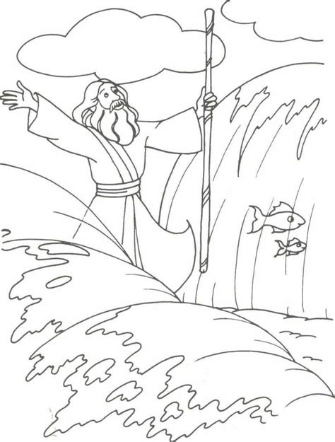 Moses And Quail Google Search Apprendre L Arabe Parting Of The Sea Coloring Page
