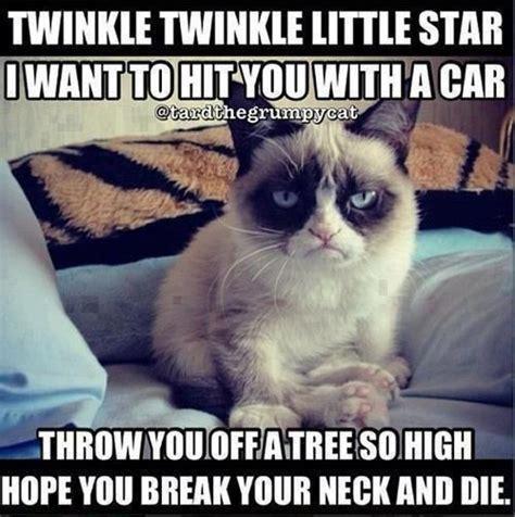 Grumpy Cat Memes Funny - funny grumpy cat poem funny dirty adult jokes memes