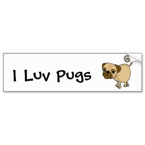 pet insurance for pugs 106 best awesome bumper stickers images on car bumper stickers pet