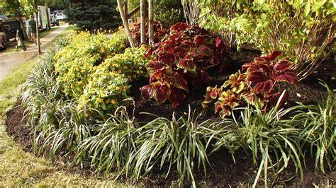 diy landscaping landscape design ideas plants lawn care garden landscaping ideas diy landscaping landscape