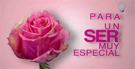 Imagenes De Rosas Para Una Persona Especial | rosas para alguien especial con frases imagenes con