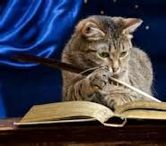 Cat In The Essay by The Cat Essay Why Not Try Order A Custom Written Essay From Us