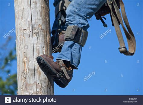 pole climbing shoes electric utility linemen climb poles to make repairs