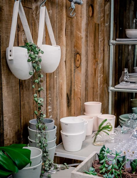 t d c interior styling indoor plants how to make interiors look more lively with indoor plants