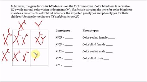 is color blindness dominant or recessive color blindness x linked trait