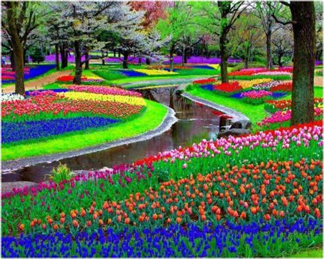 Flower Garden In Amsterdam Ladiesfashionsense Com Blog Keukenhof Flower Gardens