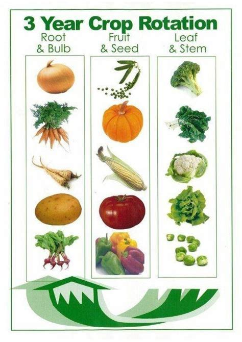 Vegetable Garden Crop Rotation 3 Year Crop Rotation Kitchen Garden 3