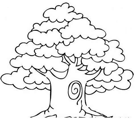 tree coloring pages mango tree trees coloring pages net