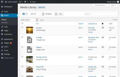 wordpress theme listview insert media files into wordpress education theme