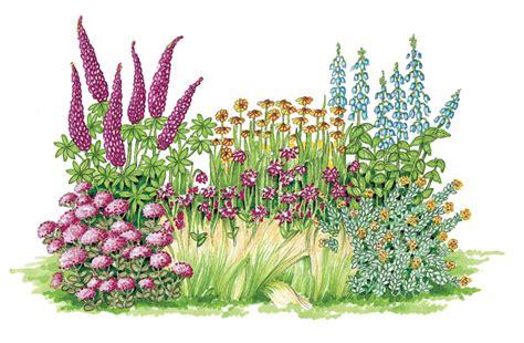 pianta fiorita tutto l anno giardini