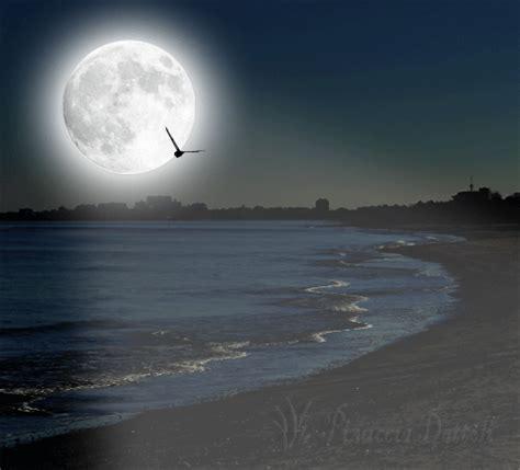 animata notturno paesaggio marino pinuccia