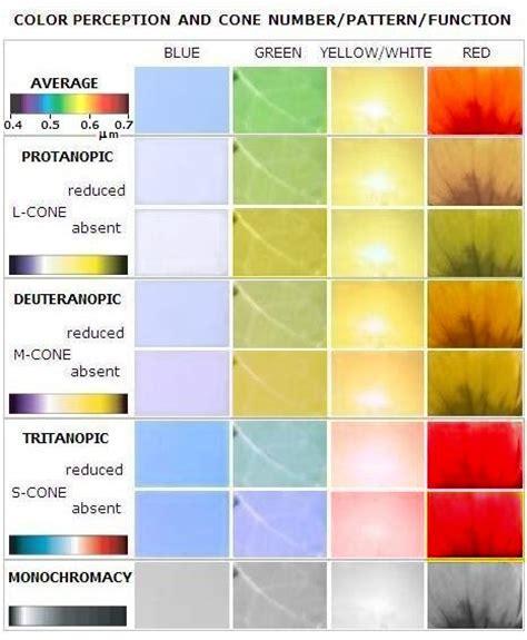 eye color distribution eye chromatism