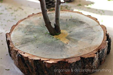 tree trunk slice branch centerpiece organize and