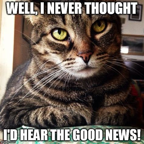 Tabby Meme - i never thought i d hear the good news imgflip