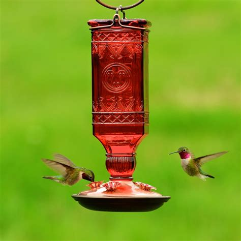 unique hummingbird feeder unique bird feeder