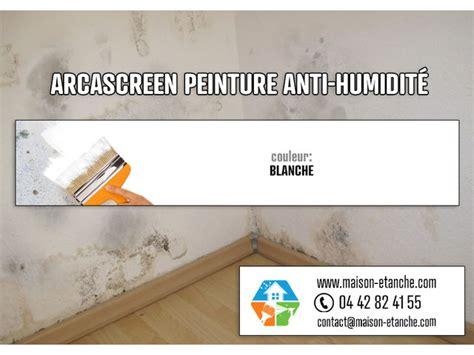 Peinture Pour Humide by Peinture Anti Moisissure Anti Humidit 233 Murs Humides