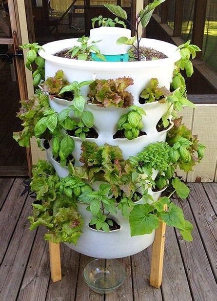 grow   food  gardening ideas   beginner