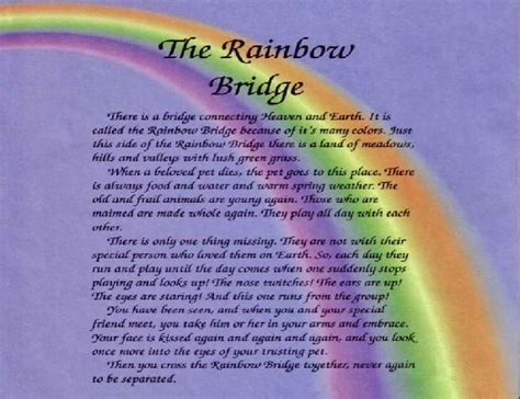 rainbow bridge poem camy and dany dreams images gallery