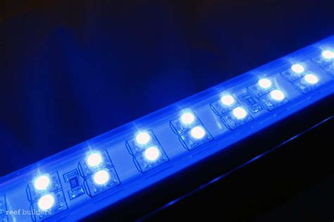 Blue Led Lights Strips Led Accent Light Strips Led Stair Lights Led Wall Lights Led Cabinet Lights Led Strips Led Bed