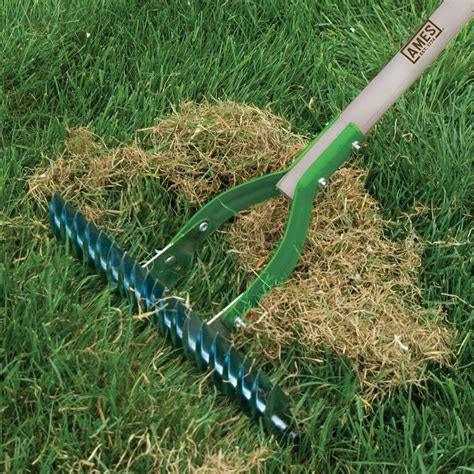 adjustable thatch rake ames