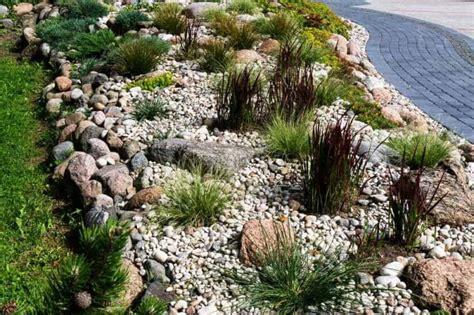 pflanze als sichtschutz 861 steingarten anlegen eine schritt f 252 r schritt anleitung
