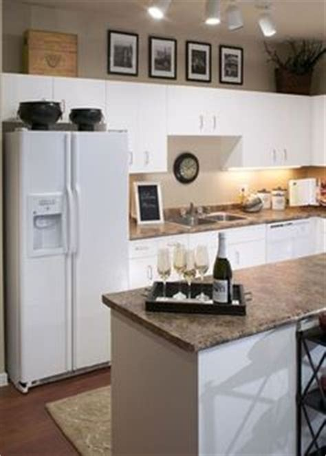 kitchen theme ideas for apartments behindshelves002 jpg photo this photo was uploaded by