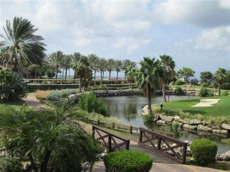 divi golf and resort reviews golf course picture of divi golf and
