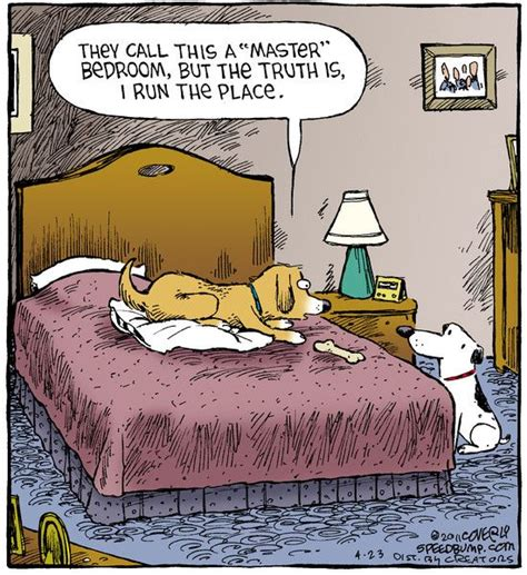 bedroom comedy 74 best best of comics images on pinterest