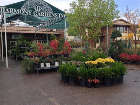 Harmony Gardens Fort Collins by Harmony Gardens Coupons In Fort Collins Nurseries