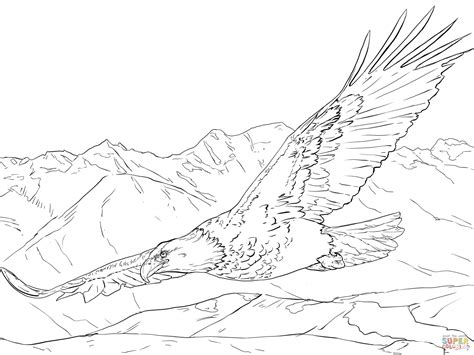 bald eagle coloring pages free bald eagle soaring coloring page free printable coloring