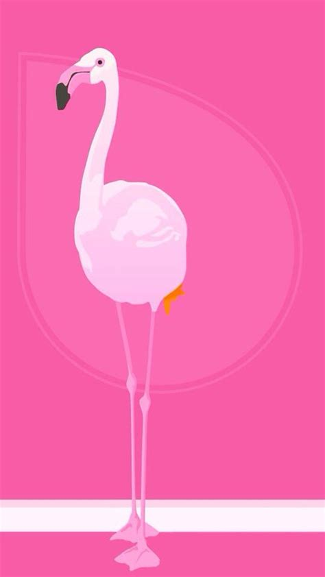 flamingo wallpaper for iphone 6 flamingo iphone wallpaper background iphone wallpaper