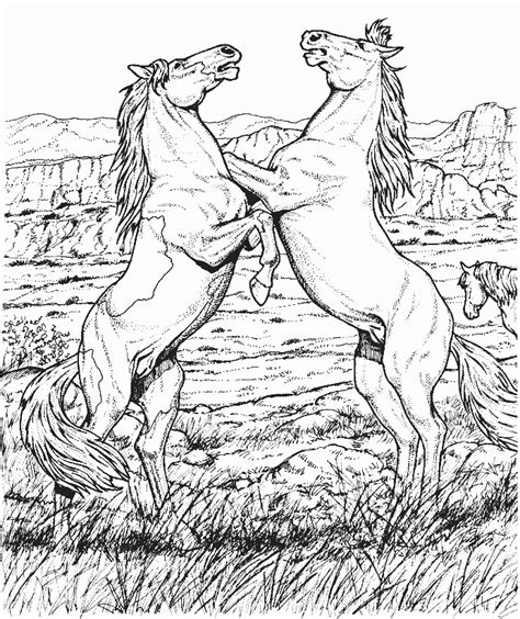 high quality coloring pages for adults 88 coloring pages for adults horses best 25