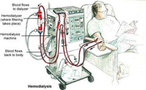 biofeedback adalah hemodialysis medicalook tests