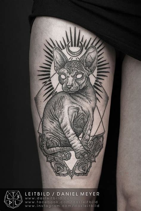 sphinx tattoo designs best 25 sphynx cat ideas on