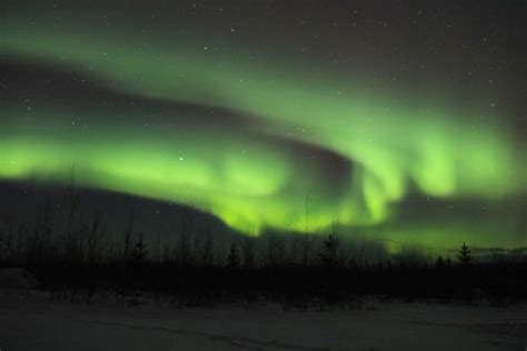 whitehorse yukon northern lights borealis in whitehorse march 2015 picture of