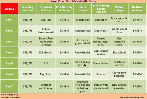 table foods for 8 month which food can be given for 8 months baby a sle
