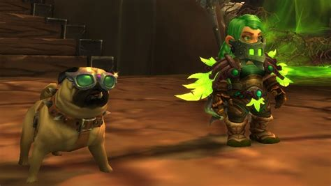 how to get the pug in wow the fastest way to level a battle pet blizzard