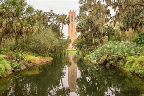 fairchild tropical botanic gardens experiencing the serenity of fairchild tropical botanic